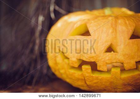 Halloween pumpkin on a gray background. Symbol.
