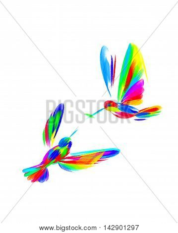 Rainbow bright illustration of birds Hummingbird on the theme of family.