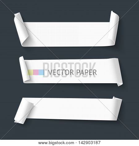 White realistic detailed paper banners, vector illustration. Long paper curved ribbons