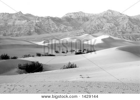 Sand Dunes In Death Valley In California, Usa