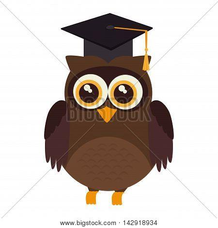 owl graduate hat animal bird academic cartoon vector illustration isolated