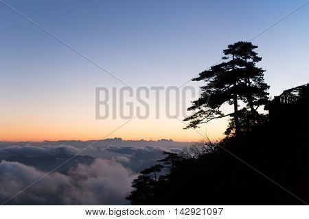 Mountain landscape with a big tree on a clear day above the clouds at sunrise in san qing China
