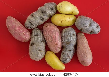 Fingerling potatoes on a red cutting board, multiple colors