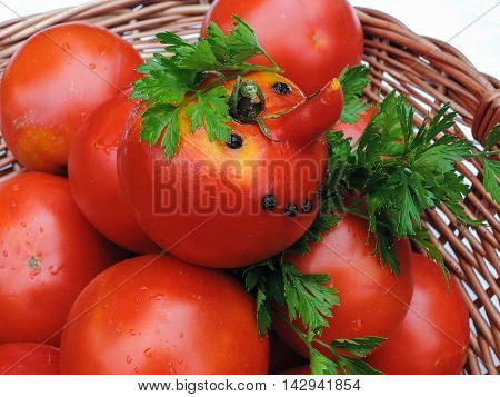 Fresh tomato juice in a glass, funny tomato, spices and parsley leaves on a white background