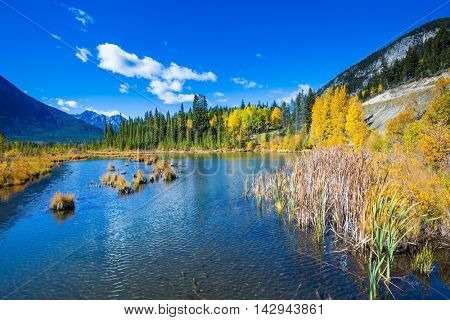Shallow Lake Vermilion among the autumn forests. Sunny day in the Canadian Rockies