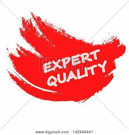 Rubber stamp with text expert quality inside vector illustration
