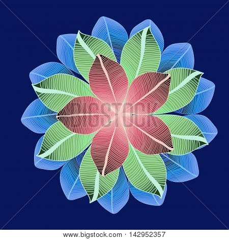 vector round pattern with three lines of colored leaves. Symmetry circle. Mandala. Sacred geometry.