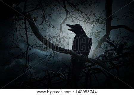 Crow sitting on dead tree trunk and croak over fence moon and cloudy sky Mysterious background Halloween concept