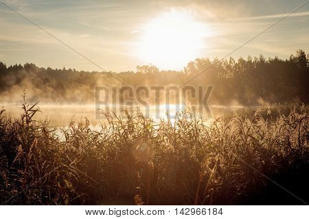 Beautiful misty sunrise over the lake in the summer