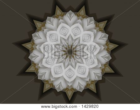 Beautiful White Wedding Mandala
