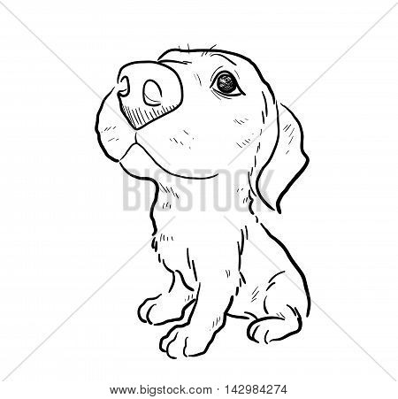 Puppy Dog Sketch. A hand drawn vector illustration of a cute puppy.
