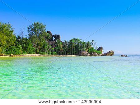 Shore Beauty Peace