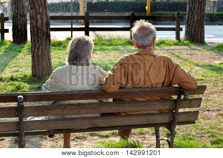 Elderly couple sitting on the bench from behind in a sunny day.