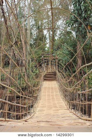 Suspension Bamboo Bridge