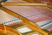 Piano Strings poster