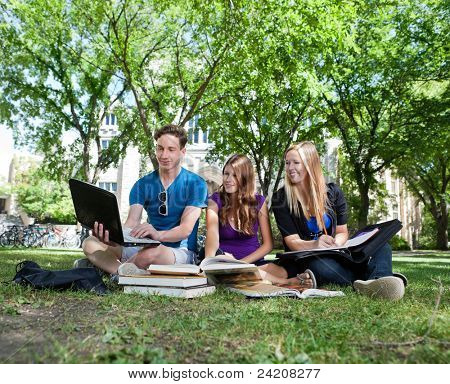College students studying together on campus ground