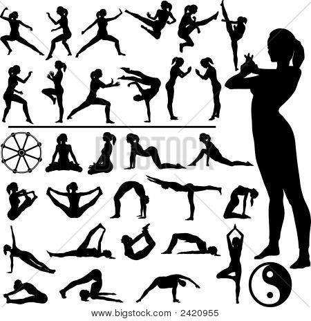 Fitness Frauen Martial Arts Yoga.