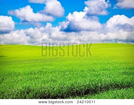 Field Over Cloudy Blue Sky