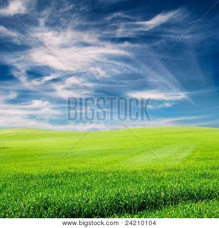 Field Over Cloudy Blue Sky