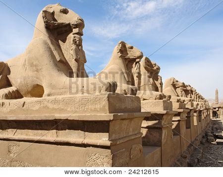 Sculptures At Precinct Of Amun-re In Egypt