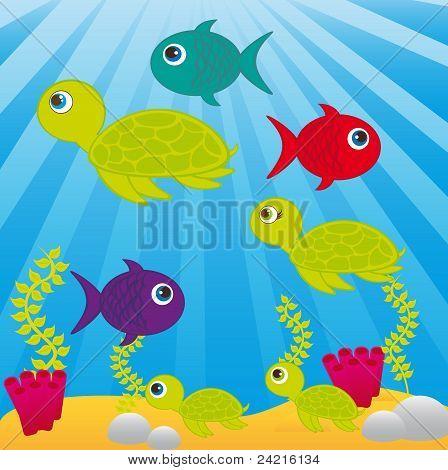 Sea Cartoon