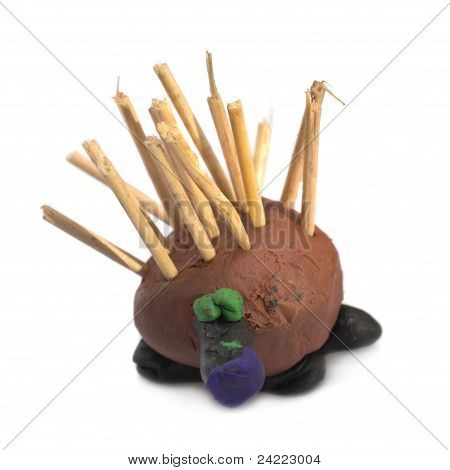 Funny Hedgehog Made By Child