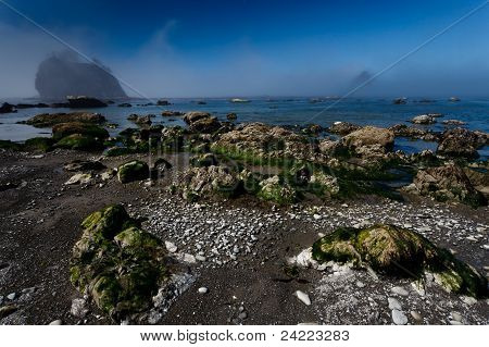 Rocky Beach And Sea Stacks In Morning Fog