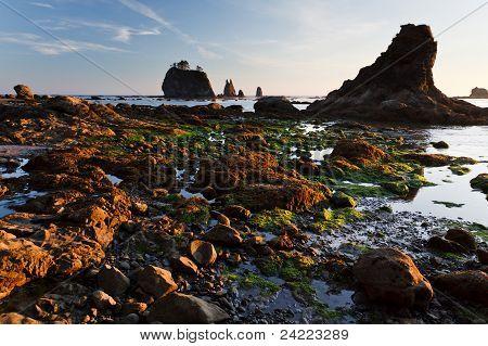 Rocky Coast And Tidepools At Sunset