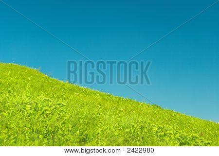 Declive verde