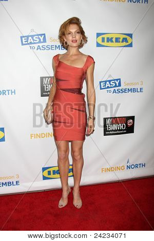 LOS ANGELES - OCT 10:  Janna Fassaert arriving at the Web-series