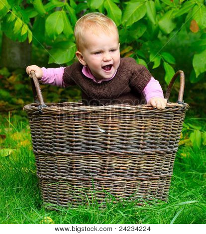 Happy child playing in the basket. Autumn at the rural garden.
