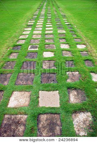 Garden green path