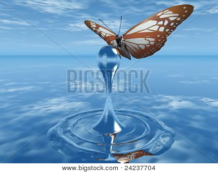 butterfly and drop
