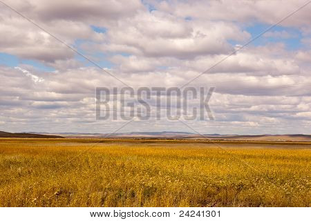 Grassland And Cloudscape