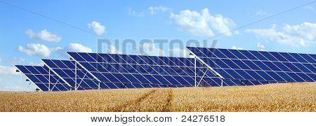 Solar energy panels on a wheat field against sunny sky.