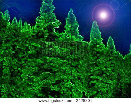 Nightsky Forest Iii