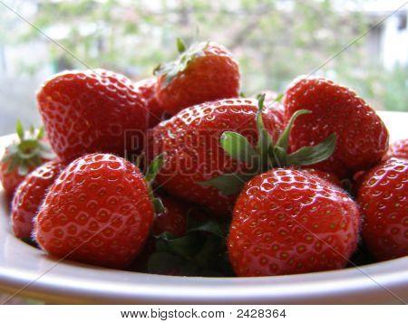 Strawberries Closeup