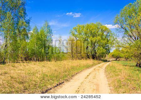 Ländliche Straße unter einem grünen Wald