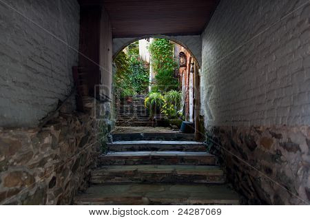 Old Alley Leading To Garden