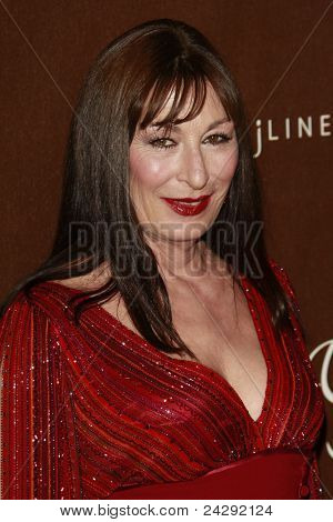 LOS ANGELES - FEB 19: Anjelica Huston at the 10th Annual Costume Designers Guild Awards held at the Beverly Wilshire Hotel on February 19, 2008 in Beverly Hills, California.