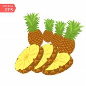 Pineapple Realistic Fruit With Slice. Vector Illustration. Ananas Ripe Tropical Exotic Juicy Fresh F poster
