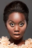 pic of afro hair  - Studio portrait of beautiful young black girl - JPG