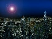 stock photo of watle  - Nightsky Forest 2 - JPG