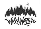 Vector Illustration: Hand Drawn Type Lettering Of Wild Nature With Silhouette Of Pine Forest And Haw poster