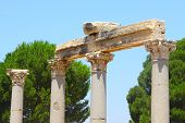 picture of brothel  - Antique columns in an antique city the Ephesus - JPG