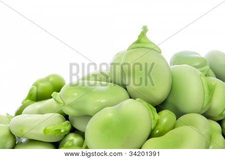 closeup of some broad beans on a white background