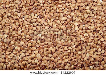 Sementes de trigo sarraceno