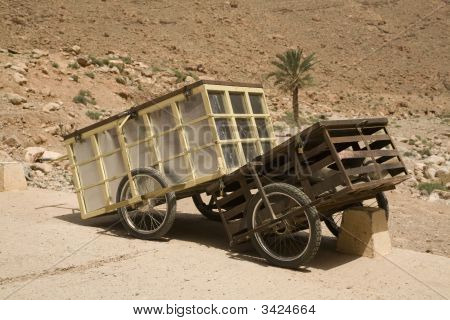 Push Carts And Tree