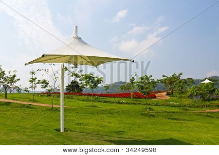 Umbrella Outdoor