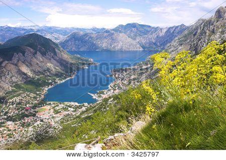 Boka Kotorska Bay Panorama From The Mountain Above